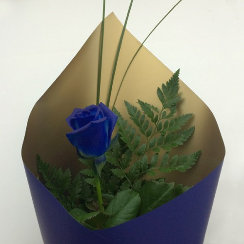 Feeling blue feels great at Parkgate – Blue Wrapping