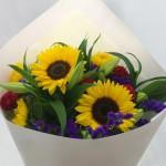 Vashi Sunflowers